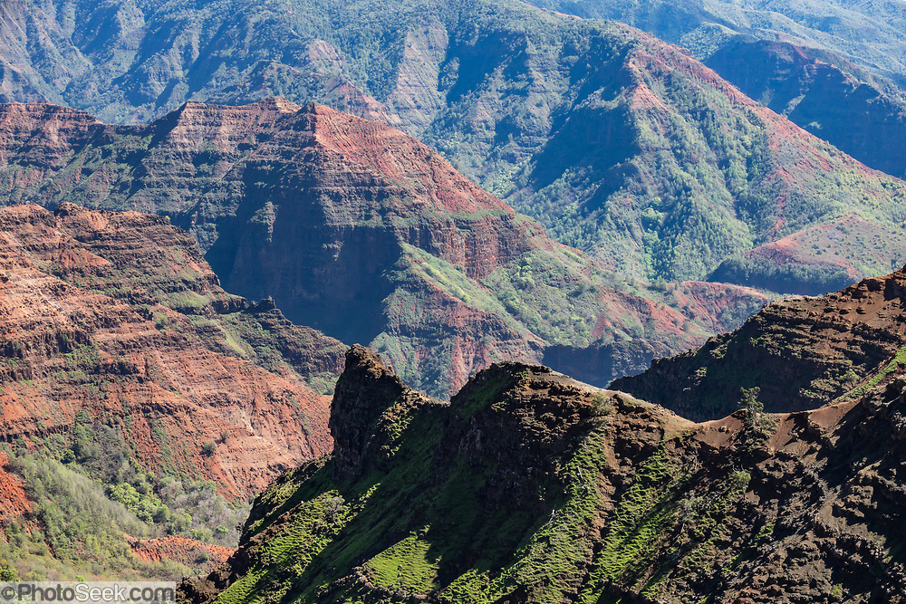 "Waimea Canyon (""the Grand Canyon of the Pacific"") slices as much as 3000 feet deep across ten miles of western Kauai in the Hawaiian Islands, USA. About 4 million years ago, a catastrophic collapse of the volcano that created Kauai created a fault which was gradually cut deeper by the Waimea River, fed by extreme rainfall on the island's central peak, Mount Wai'ale'ale, among the wettest places on Earth. Waimea is Hawaiian for ""reddish water,"" referring to the local orange clay."