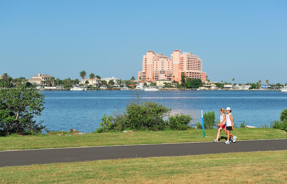 Downtown and Renaissance Vinoy Resort, view over Tampa Bay, St. Petersburg, Florida, USA