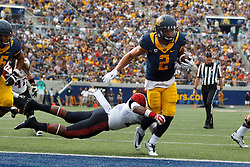 BERKELEY, CA - SEPTEMBER 12:  Running back Daniel Lasco #2 of the California Golden Bears scores a touchdown past defensive back Na'im McGee #21 of the San Diego State Aztecs during the third quarter at California Memorial Stadium on September 12, 2015 in Berkeley, California. The California Golden Bears defeated the San Diego State Aztecs 35-7. (Photo by Jason O. Watson/Getty Images) *** Local Caption *** Daniel Lasco; Na'im McGee
