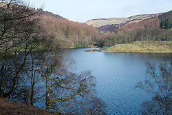 "The View East from the West bank of the Derwent Reservoir in Derbyshire, England is the middle of three reservoirs in the Upper Derwent Valley, the higher reservoir being Howden to the North and the lower being Ladybower to the south. Between them they provide practically all of Derbyshire's water, as well as to a large part of South Yorkshire and as far afield as Nottingham and Leicester.<br /> Begun in 1902 this neo-Gothic solid masonry dam wall is built from huge stones that were transported along a specially created railway from the quarries at Grindleford. Over 1,000 workers lived in a specially constructed and self-contained town of Birchinlee also known as ""Tin Town"". Derwent reservoir began being filled in November 1914, and overflowed for the first time in January of 1916. Covering an area of 70.8 hectares (175 acres) and at its deepest point is 34.7 metres (114 ft) the dam can support a total of 9.64 million cubic metres of water.<br /> For 6 weeks during the Second World War the reservoir was used by the pilots of the 617 Squadron ""the Dambusters"" to practice their low-level flying skills needed for Operation Chastise, because of the Derwents similarity to the operations German target. In for 2 weeks in 1954 the the sound of Lancaster bomber engines could be heard again over the Derwent as the reservoir stood in for the German dams a second time. This time for the filming of the ""The Dambusters"" starring Richard Todd as Guy Gibson. The west tower of the dam wall is home to Derwent Valley Museum and includes a permanent memorial to 617 Squadron to which is visible even when the Museum is closed. <br /> <br /> 22  March 2015 Image © Paul David Drabble www.pauldaviddrabble.co.uk"