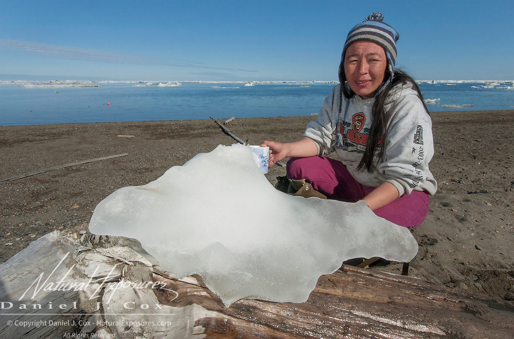 Native Inuit woman with a chunk of ice to preserve Arctic dhar fish prior to drying. Barrow, Alaska
