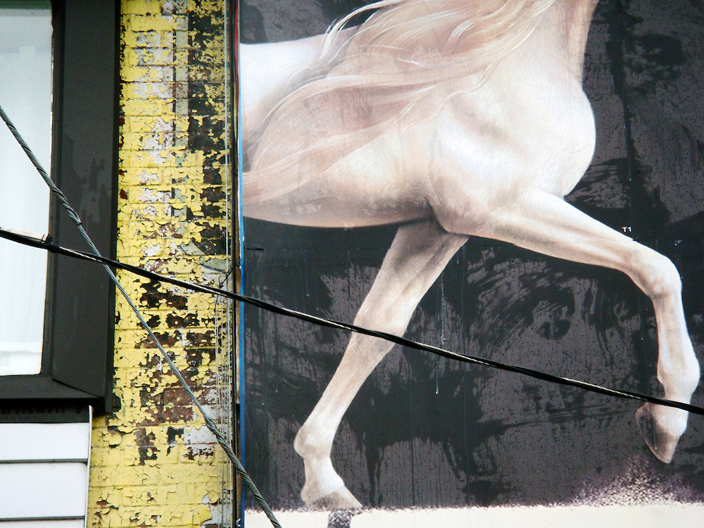 Constrained by what I could capture while waiting for the stop light to change, this is winged horse seemed to be prancing off the weathered wall.