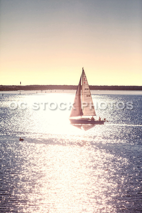 Sailing on the Pacific Ocean in Marina Del Rey Los Angeles
