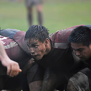 Harvard Rugby