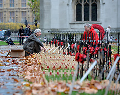 NOV 07 2014 Field of Remembrance