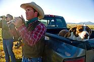Green Ranching in Montana