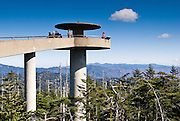 "A popular observation tower on Clingman's Dome gives a panoramic view of Great Smoky Mountains National Park of Tennessee and North Carolina, in southeastern USA. Clingmans Dome (6,643 feet or 2,025 meters elevation) is the highest mountain in the Great Smokies, the highest in Tennessee, the highest along the 2,174-mile (3,499 km) Appalachian Trail, and the third-highest mountain in the Appalachian range. A paved road connects it to U.S. Highway 441 (Newfound Gap Road). The summit is coated by a Spruce-fir (or ""boreal"") forest, common in northern latitudes, but found only in the highest elevations in the southeastern United States. Clingmans Dome, like most of the Great Smokies, consists of a type of lightly metamorphosed sedimentary rock (especially sandstone) that is part of the Ocoee Supergroup formation, created from ancient ocean sediments nearly one billion years ago. The Smoky Mountains are among the oldest in the world, lifted approximately 200-300 million years ago in the Alleghenian orogeny."