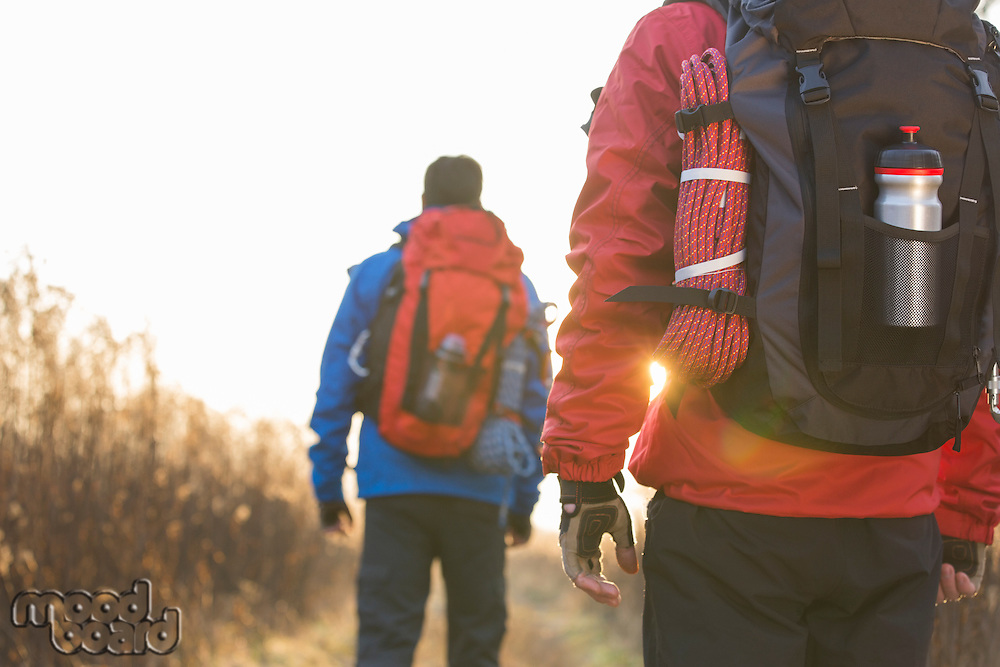 Rear view of male backpackers walking in field