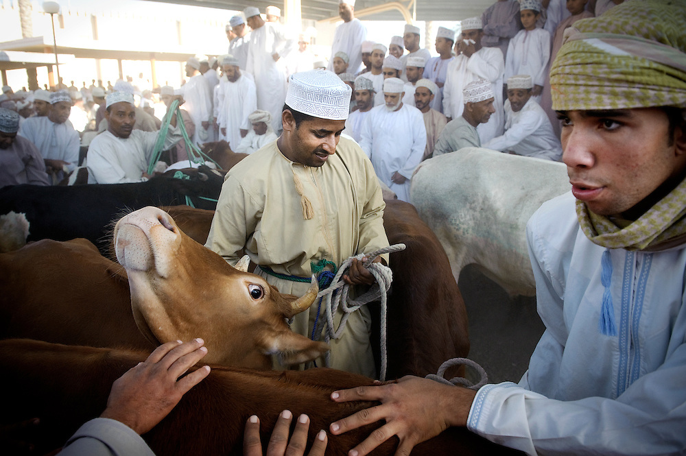 Nizwa, Sultanate of Oman,  28 November 2008<br /> Animal market in Nizwa city.<br /> Photo: Ezequiel Scagnetti<br /> <br /> Based in Brussels, Belgium, professional photographer Ezequiel Scagnetti provides corporate, travel and portrait photography services.