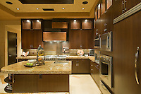 Contemporary kitchen in luxury residential house