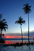 palm trees at sun set Koh Phangan Thailand