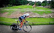 Het NK Tijdrijden voor professional wielrenners vindt plaats in Dierenpark Emmen. De wedstrijd is een van de laatste testen voor de Olympische Spelen.