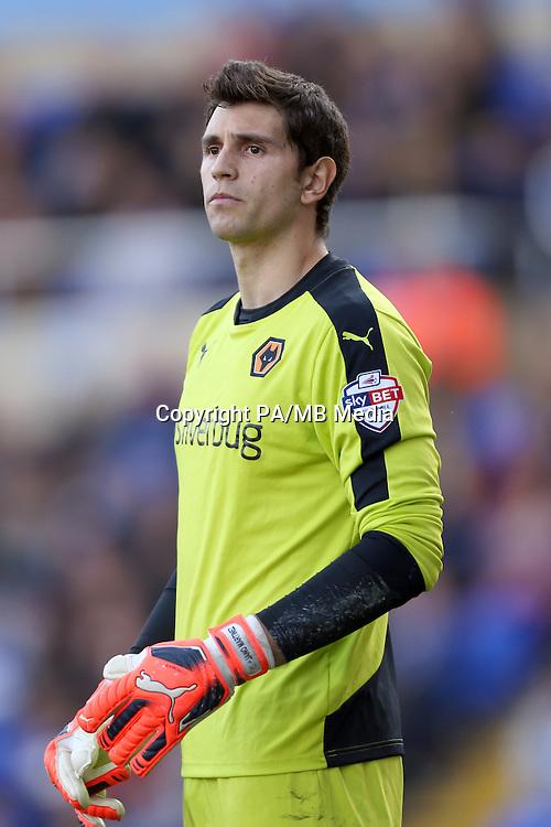Emiliano Martinez, Wolverhampton Wanderers goalkeeper