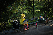 A young bird watcher spotted a Big Bird in Central Park