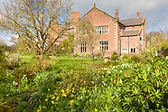 Tattenhall Hall in March