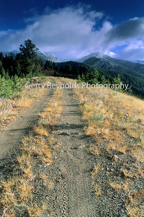 Dirt Road, Clouds, Mountains, Forest, Sunrise, Galena Pass, Sun Valley, Idaho