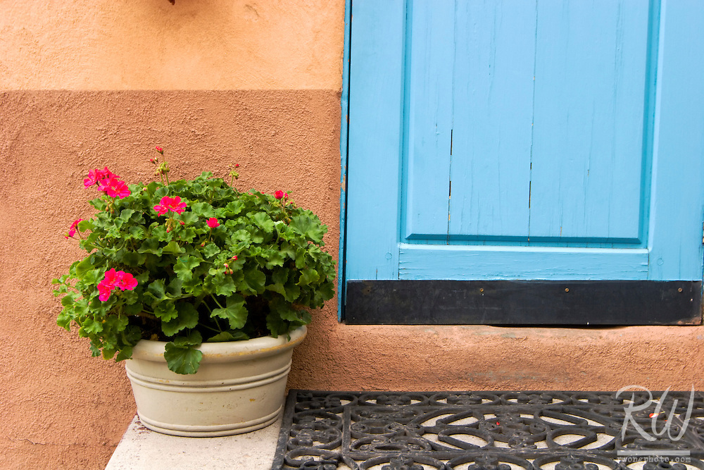 Plant on Turquoise Doorway, Taos, New Mexico