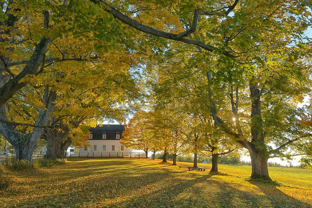 Canterbury Shaker Village in autumn,, Merrimack County, New England, East Coast, USA,