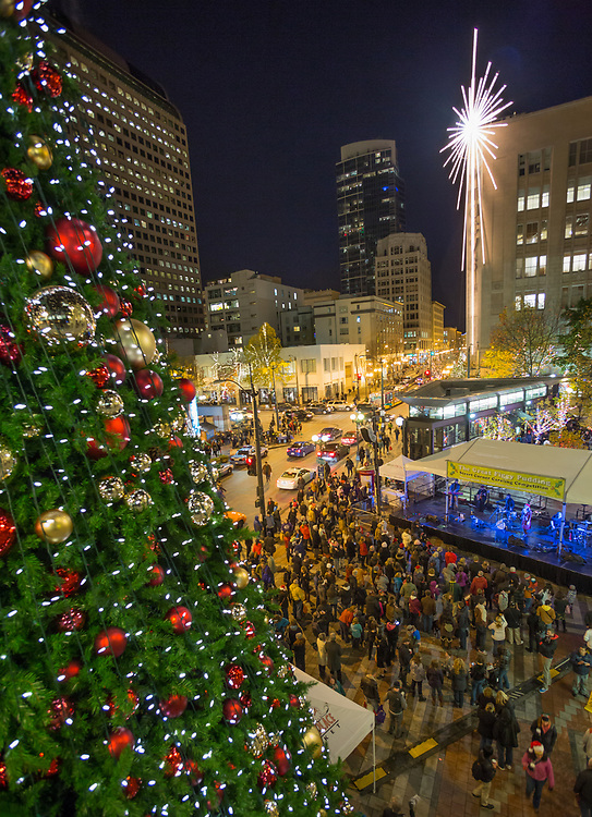 North America, United States, Washington,  Seattle, Giant holiday star and Christmas Tree at  Westlake Park
