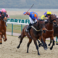 Lingfield 10th April 2013