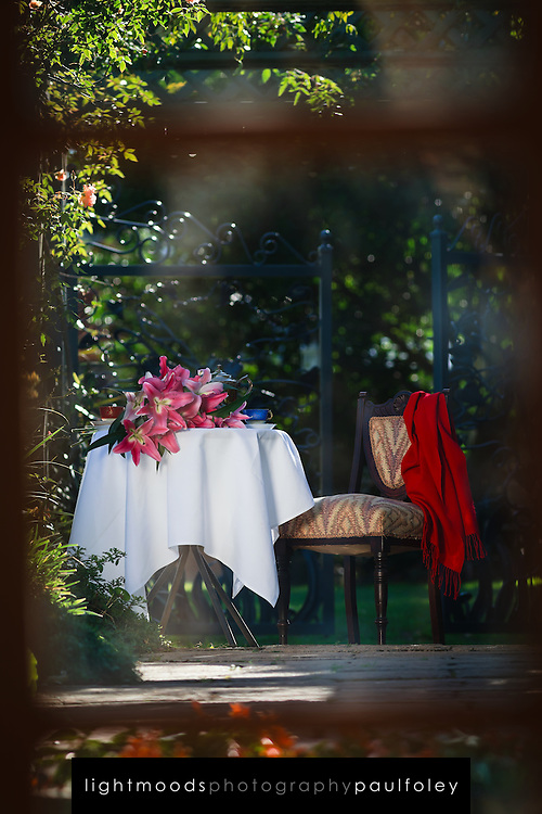 Outdoor Afternoon Tea Setting in sun dappled garden, looking through french doors.