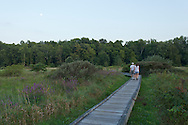 Vernon, New Jersey - People walk along the Pochuck Boardwalk section of the Appalachian Trail on the evening Aug. 28, 2012. over the Pochuck Creek.