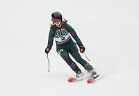 Lakes Region GS Alpine Championships at Proctor.  ©2019 Karen Bobotas Photographer