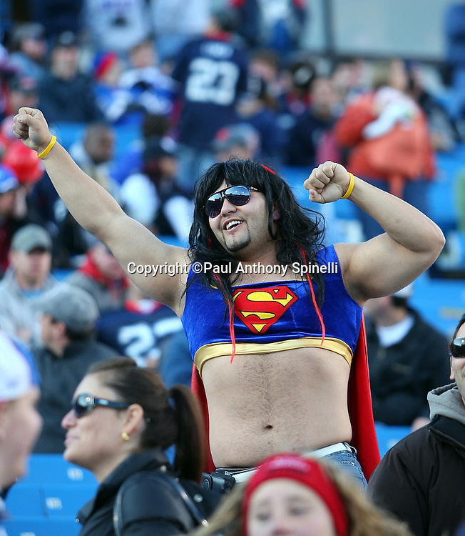 A Buffalo Bills fan in a Superman costume cheers during the NFL football game against the Houston Texans, November 1, 2009 in Orchard Park, New York. The Texans won the game 31-10. (©Paul Anthony Spinelli)