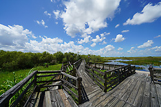 Everglades NP (Ground and Aerial)