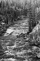 Water flowing over the dark rocks of Lewis River in Yellowstone National Park, Wyoming
