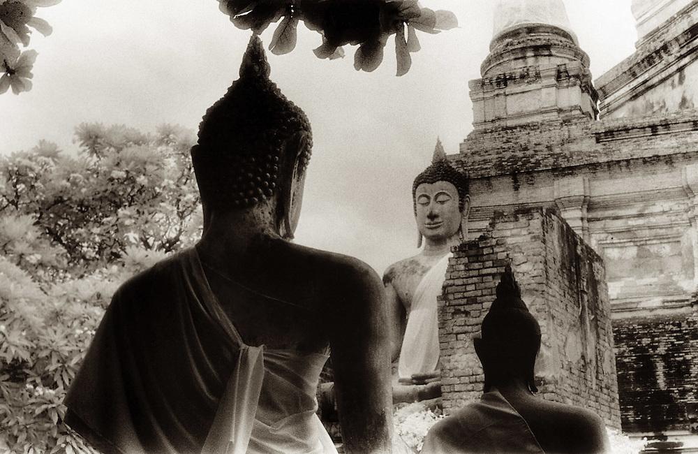 Facing Buddhas - Ayutthia, Thailand.