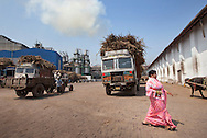 Trucks carry sugarcane wait to be unloaded at Simbhaoli Sugars factory in in Hapur District in Uttar Pradesh, India on April 2, 2014. The plant, contracted with 50,000 local sugarcane farmers, produces about 9500 tons of sugar per day including bulk sugar,pharmaceutical sugar, candy sugar and raw sugar. Uttar Pradesh is the 2nd largest sugar production state in India following Maharashtra. <br /> (Kuni Takahashi/Bloomberg)