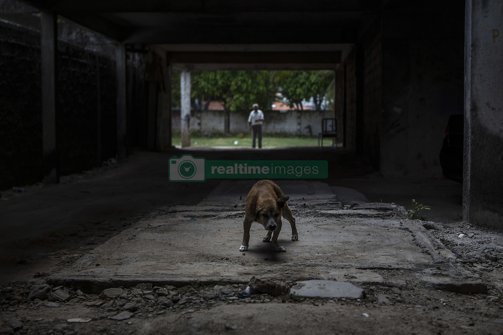 October 9, 2016 - Boa Viagem, Brazil - The only friend of Mr. Jose is a dog that he affectionately calls Teco, but already old and sick.  José Belmiro dos Santos is 84 years old, married to Rosalia Maria da Conceição and has nine children. He is retired since 1997 and works in a parking taking care of vehicles. The parking lot is situated in an abandoned building in Boa Viagem, in Recife, Pernambuco state, Brazil.Mr. José has to live in the building and can only visit family once a month. He thinks it's dangerous, because the parking lot is located inside a slum, but need to earn cash and stay home another person can take his job.Mr. José is part of a national statistic that indicates an increase in the number of pensioners who return to work in Brazil, 5.9% in the first quarter of 2012 to 6.5% in the second quarter 2016 (data from the Brazilian Institute of geography and Statistics), due to the current economic crisis.The government of the current President Michel Temer has as one of the goals the approval of Welfare Reform, thus ensuring clearer rules for retirement and the increase in the contribution to the public coffers. The approval of new rules for retirement might take the Brazil of the crisis and increase a government approval rating scored by polemics and an impeachment questioned by the opposition. (Credit Image: © Diego Herculano/NurPhoto via ZUMA Press)