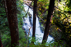 Carter Falls, Mt. Rainier National Park, Washington, US