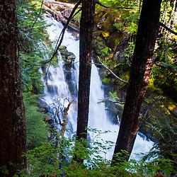 Carter Falls, Mt. Rainier National Park, Washington, US