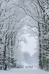 Boekestijn, 's-Graveland, Wijdemeren, Noord Holland