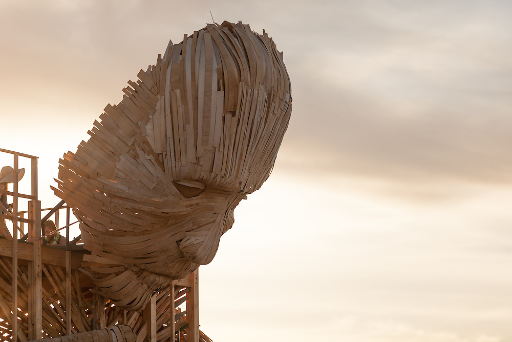 Reflection face at AfrikaBurn 2014, Tankwa Karoo desert, South Africa