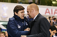 Mauricio Pochettino, Manager of Tottenham Hotspur, and Sean Dyche, Manager of Burnley, shake hands before the FA Cup match at White Hart Lane, London<br /> Picture by David Horn/Focus Images Ltd +44 7545 970036<br /> 14/01/2015