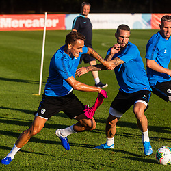 20190902: SLO, Football - Slovenian national football team practice