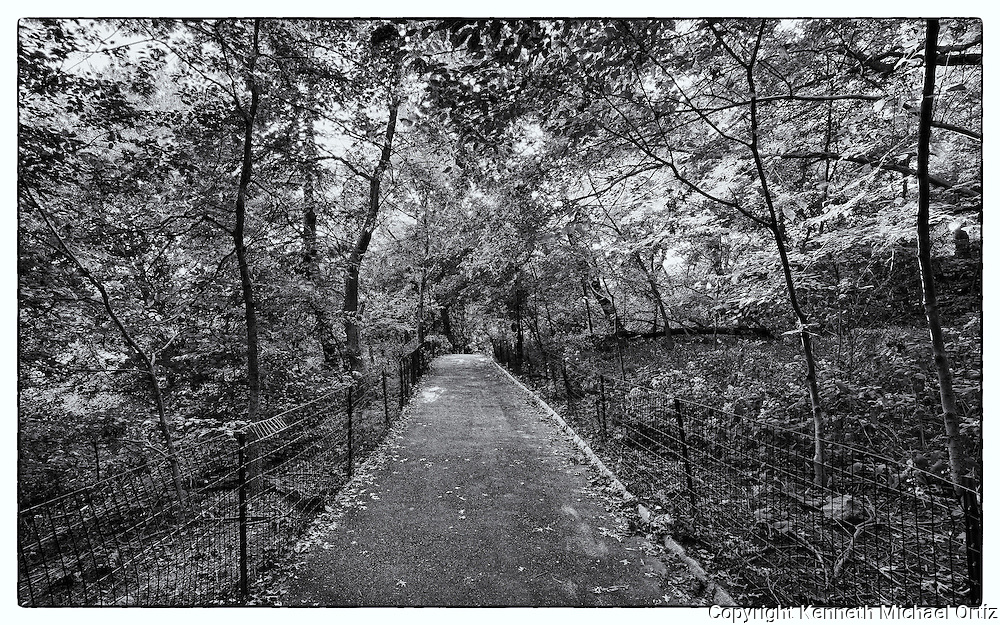 One of the many trails that make up Central Park in New York City.