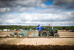 © Licensed to London News Pictures. 08/09/2016. York UK. The 66th British Ploughing Championship has got under way today at Crockey Hill Farm near York. The event will see 250 ploughmen & one woman from throughout Great Britain taking part who will then compete in the 63rd World ploughing championships at the weekend. Photo credit: Andrew McCaren/LNP