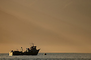 Versorgungsschiff für die Lachsfarmen im Comau Fjord Comau Fjord, Patagonia, Chile |