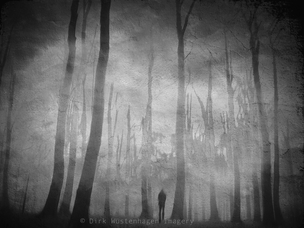 Photomanipulation. Misty forest & man walking. Panning of camera....textures