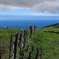 The Kahua Ranch on Hawai'i.