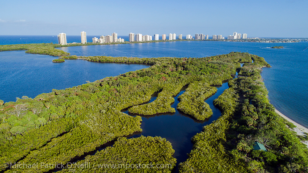 Lake Worth Lagoon in northern Palm Beach County, Florida, United States is a brackish estuary rich in inshore marine life species.