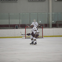 Men's Ice Hockey: Concordia College, Moorhead Cobbers vs. Saint Mary's University (Minn.) Cardinals
