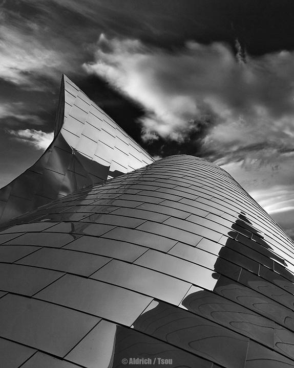 Walt Disney Concert Hall, LA CA
