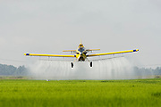 Crop duster spraying a rice field near Hazen Arkansas in July.