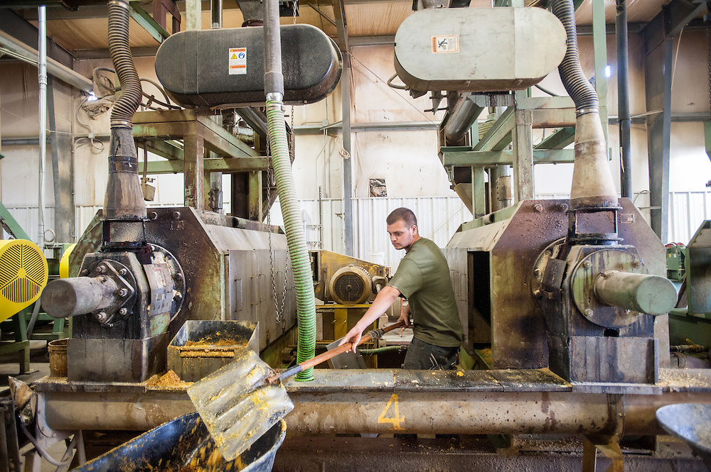 Man working at soybean oil plant<br /> Indiana PA