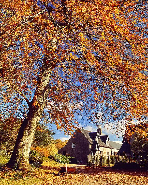 Ardchattan Priory, Argyll